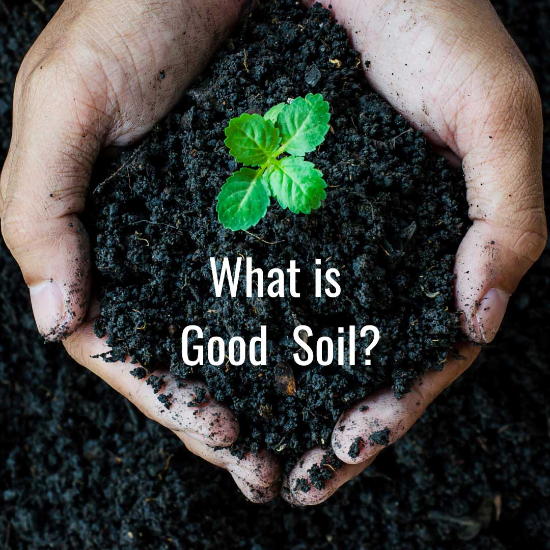 What is Good Soil?